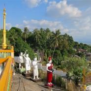 Temple Figures
