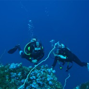 Divers at Black Rock